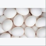White Eggs For Sale..