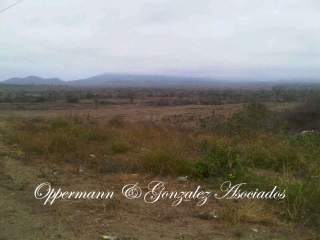 Farm for sale in zona Franca by Montecristi.