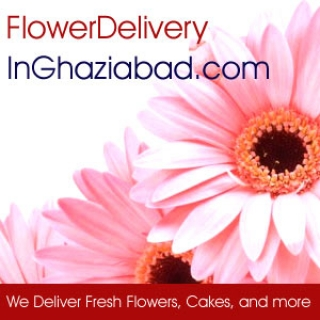 Best of gift collections as delivered through online shopping