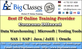 SAP BW Online Training