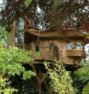 Design Masters of Tree houses