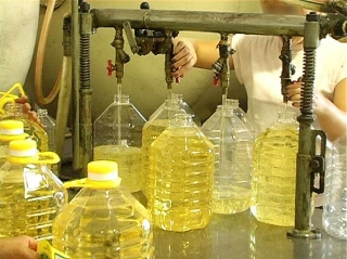 Palm Oil,Sunflower Oil,Rapeseed,corn Oil