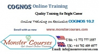 Cognos Online Training by experts with Placements