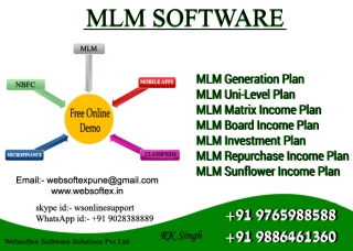 MLM Software in Miri