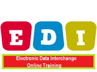 Electronic Data Interchange EDI Online Training
