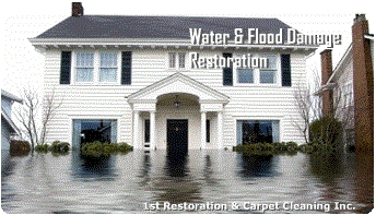 Find water and mold removal Cooper city only at Carpetcleaningandwaterdamage.com