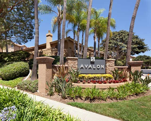 San Diego - superb Apartment nearby fine dining