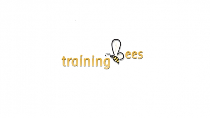 SAP Vistex online training @ trainingbees.com