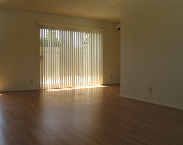 Spacious newly renovated 3rd floor 1 bedroom.