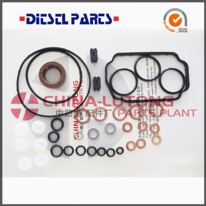 High Quality Pump Parts Rebulid Kit 1 467 010 059 For Automotive Fuel Repair kit