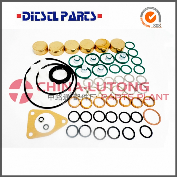 Ve Pump Parts Repair Kit 2 417 010 010 rebulid kit