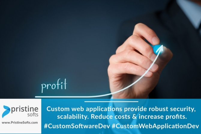 Custom Web app development