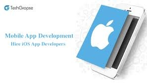 iPhone App Development Company | TechGropse
