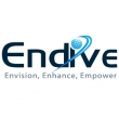 Company Endive Software