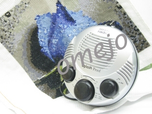 Omejo Shower Spy Radio Hidden Camera 1280x960 Motion Detection And Remote Control 16gb