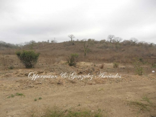 Land for sale in Monte Cristi.